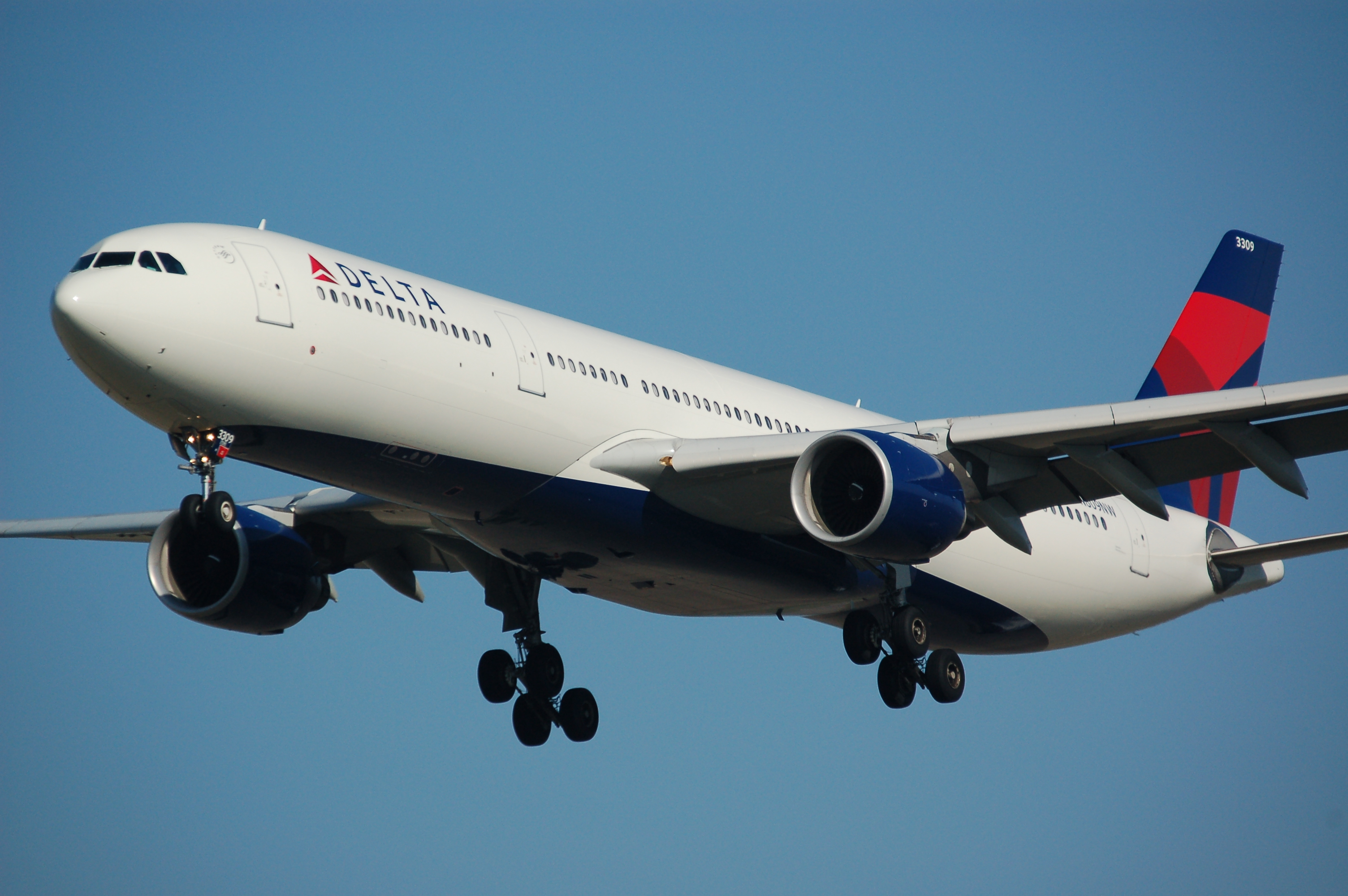 Delta Portland To Amsterdam In Economy: A Review - Points