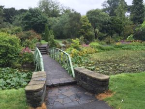ireland botanical gardens