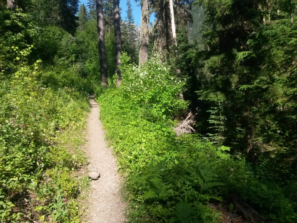 snyder lake trail