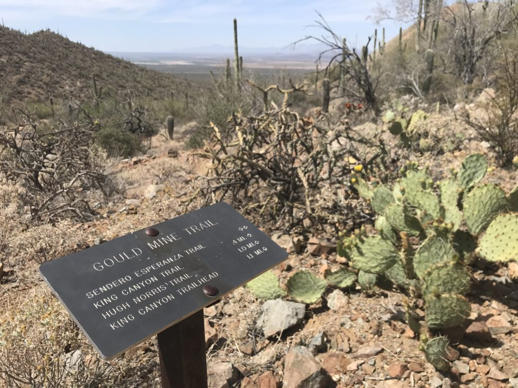 kings canyon - gould mine loop hike