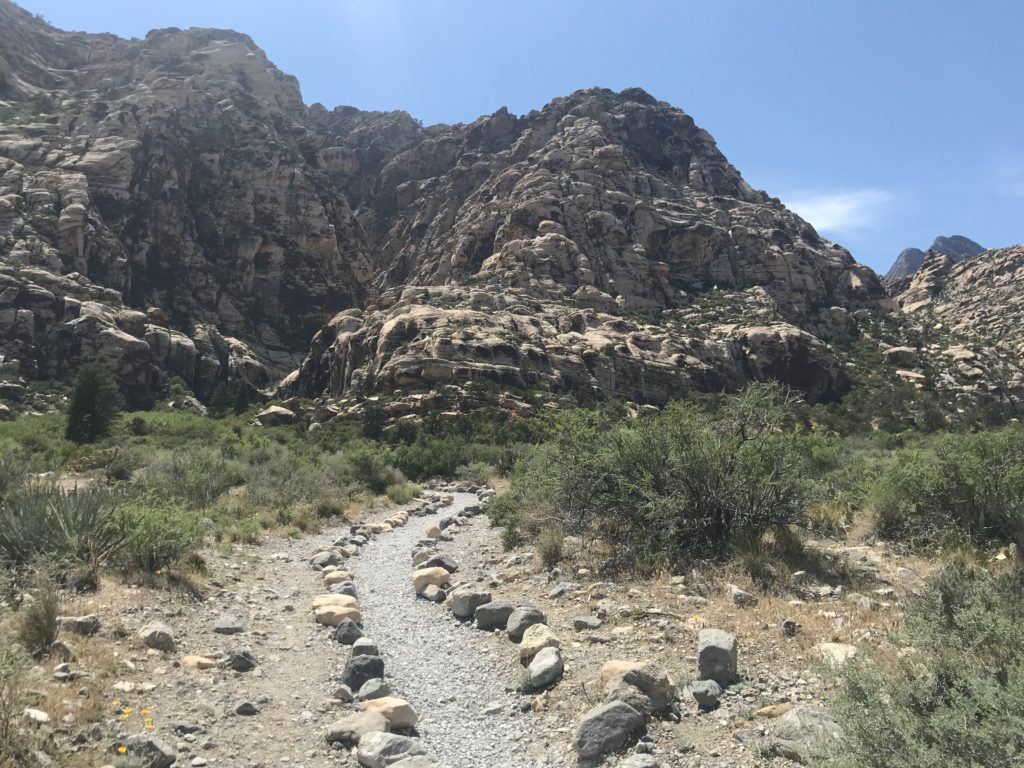 Easiest Hike in Red Rock Canyon National Conservation Area